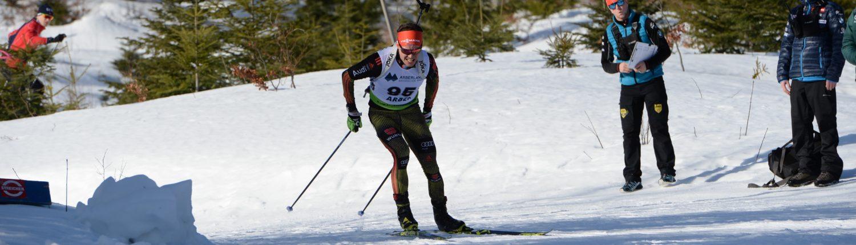 Sportsponsoring; Triceps; Biathlon